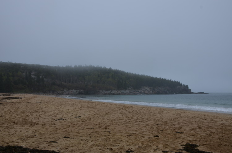 Acadia_BarHarbor-Maine (3/231)