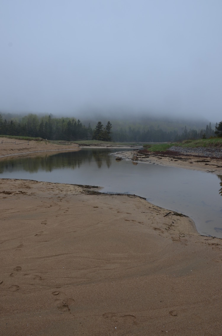 Acadia_BarHarbor-Maine (8/231)