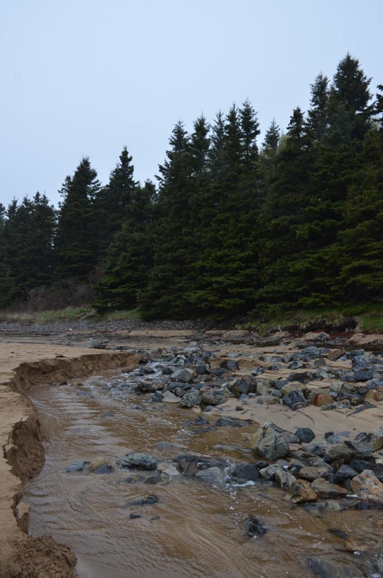 Acadia_BarHarbor-Maine (12/231)