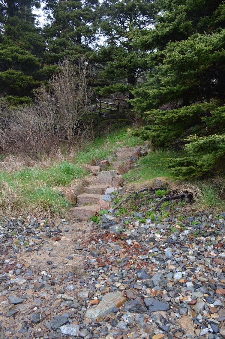 Acadia_BarHarbor-Maine (16/231)