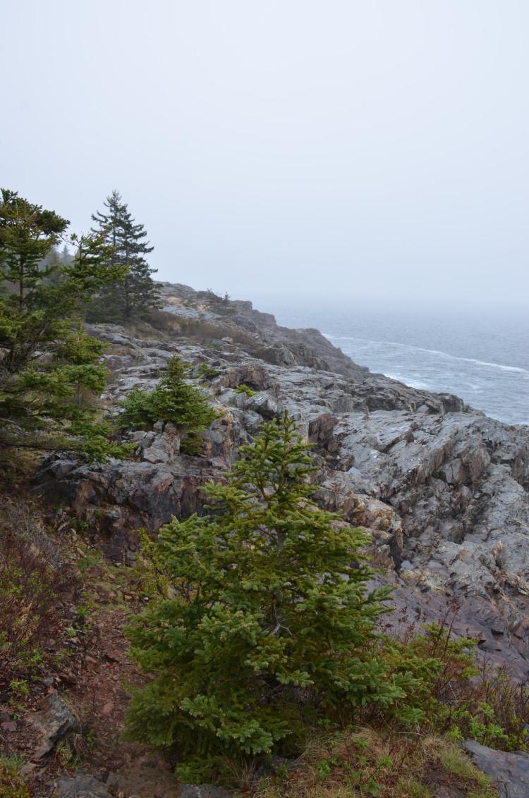 Acadia_BarHarbor-Maine (49/231)
