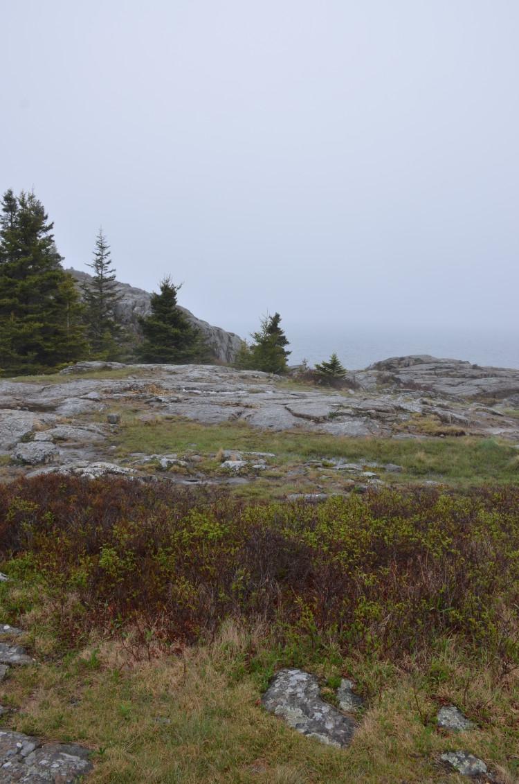 Acadia_BarHarbor-Maine (54/231)