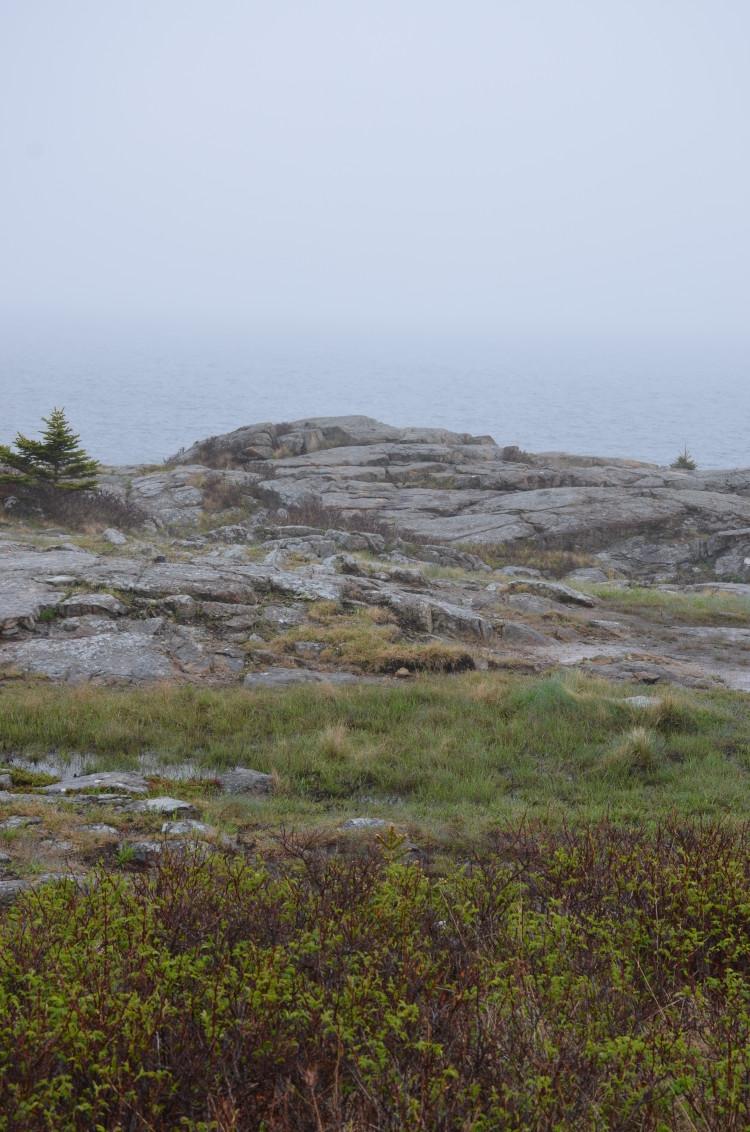 Acadia_BarHarbor-Maine (56/231)