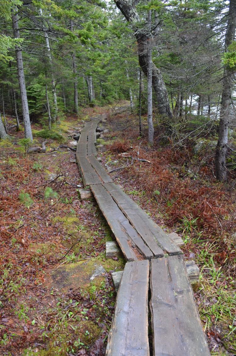 Acadia_BarHarbor-Maine (79/231)