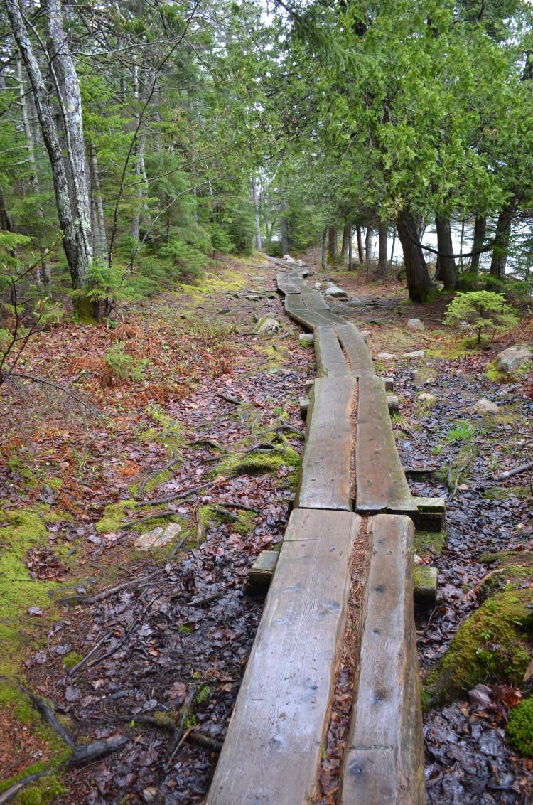 Acadia_BarHarbor-Maine (81/231)