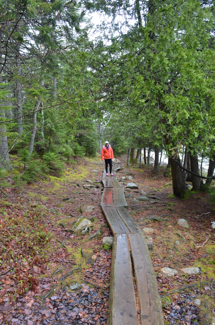 Acadia_BarHarbor-Maine (84/231)
