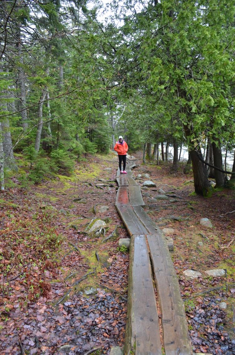 Acadia_BarHarbor-Maine (85/231)