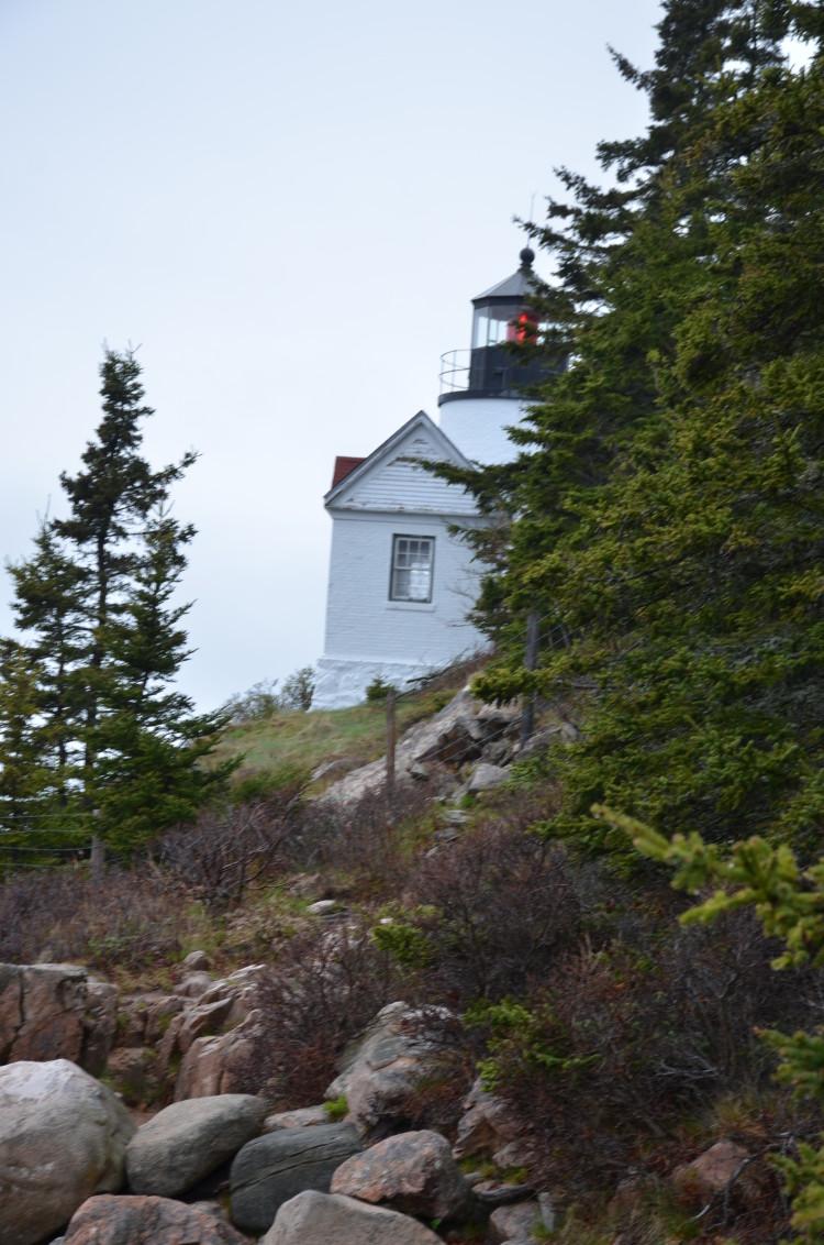 Acadia_BarHarbor-Maine (92/231)