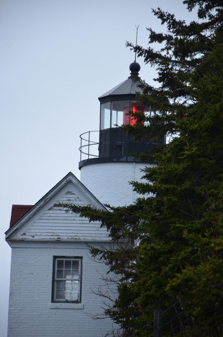 Acadia_BarHarbor-Maine (95/231)