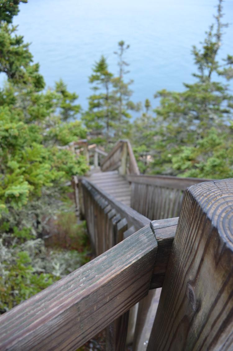 Acadia_BarHarbor-Maine (121/231)