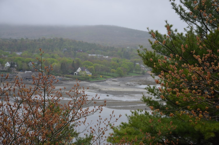 Acadia_BarHarbor-Maine (134/231)