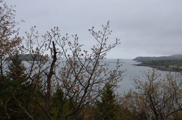 Acadia_BarHarbor-Maine (135/231)