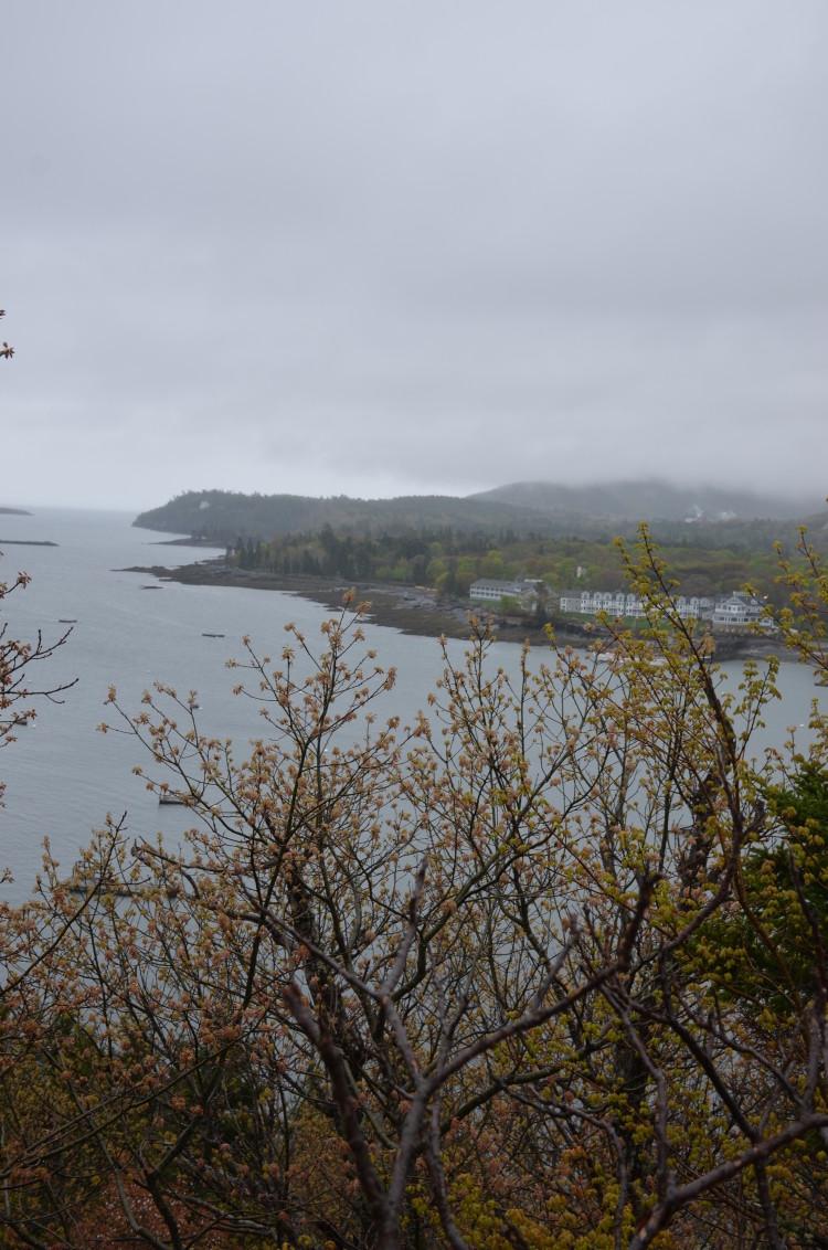 Acadia_BarHarbor-Maine (136/231)