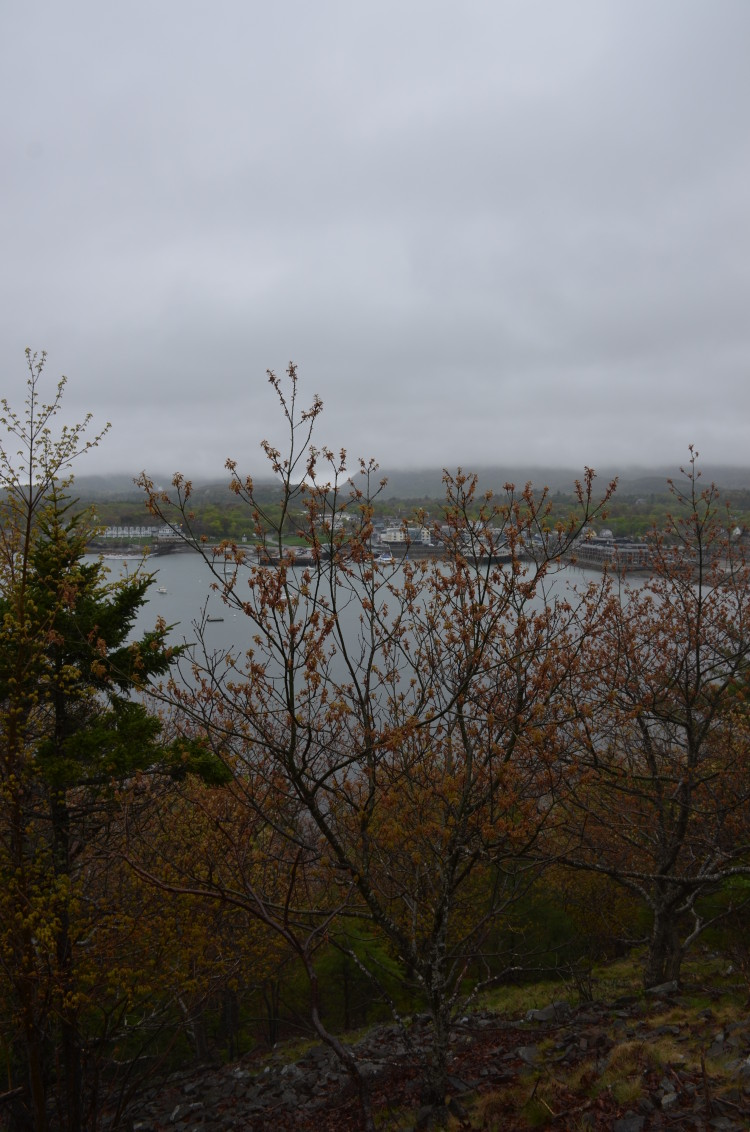Acadia_BarHarbor-Maine (137/231)