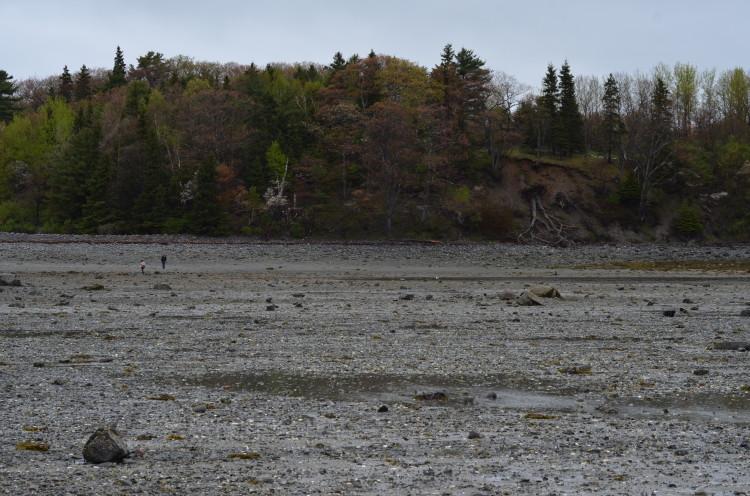 Acadia_BarHarbor-Maine (157/231)