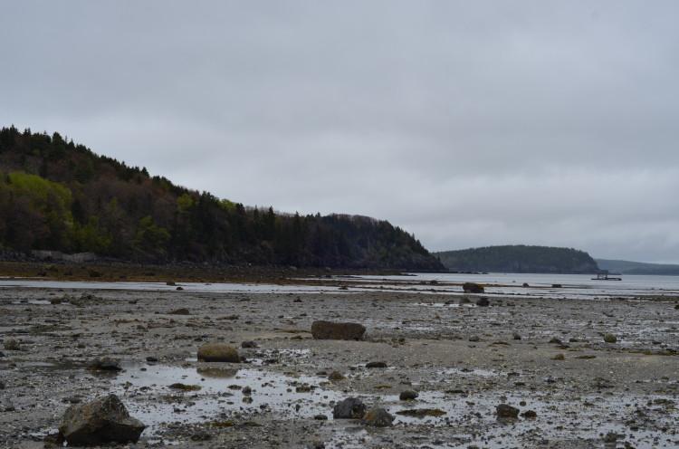 Acadia_BarHarbor-Maine (159/231)