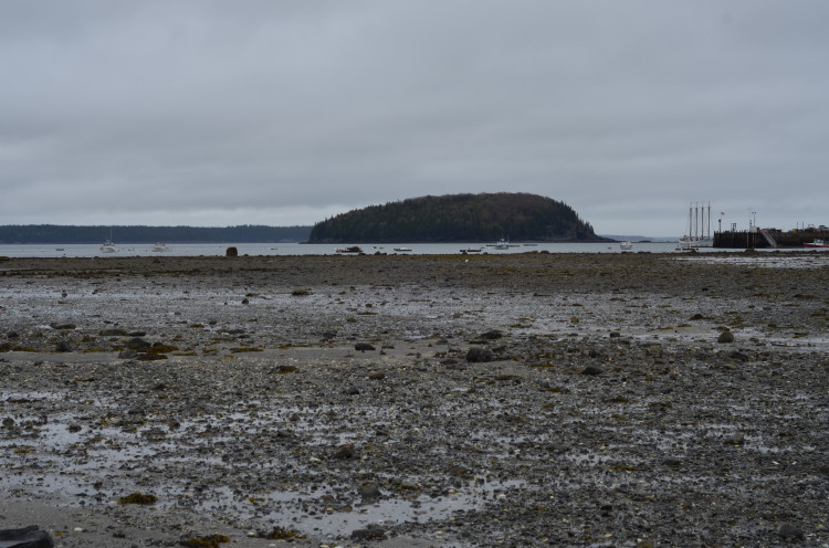 Acadia_BarHarbor-Maine (161/231)