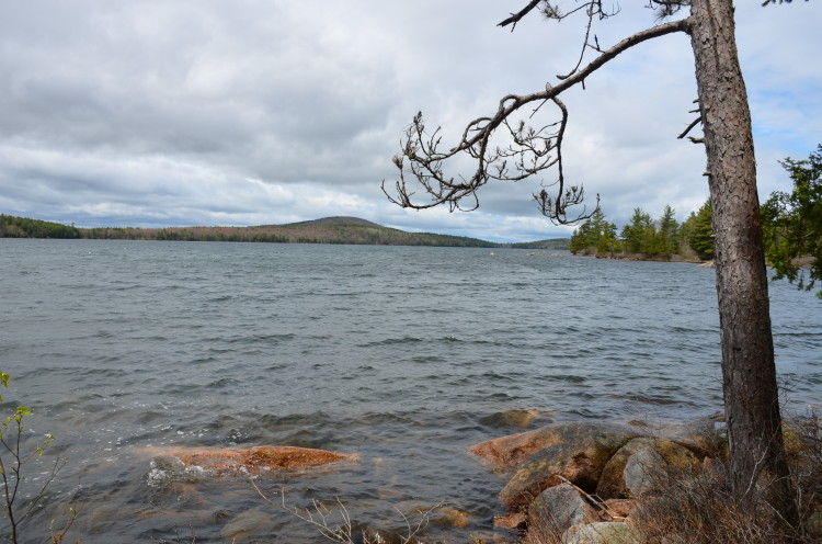 Acadia_BarHarbor-Maine (174/231)