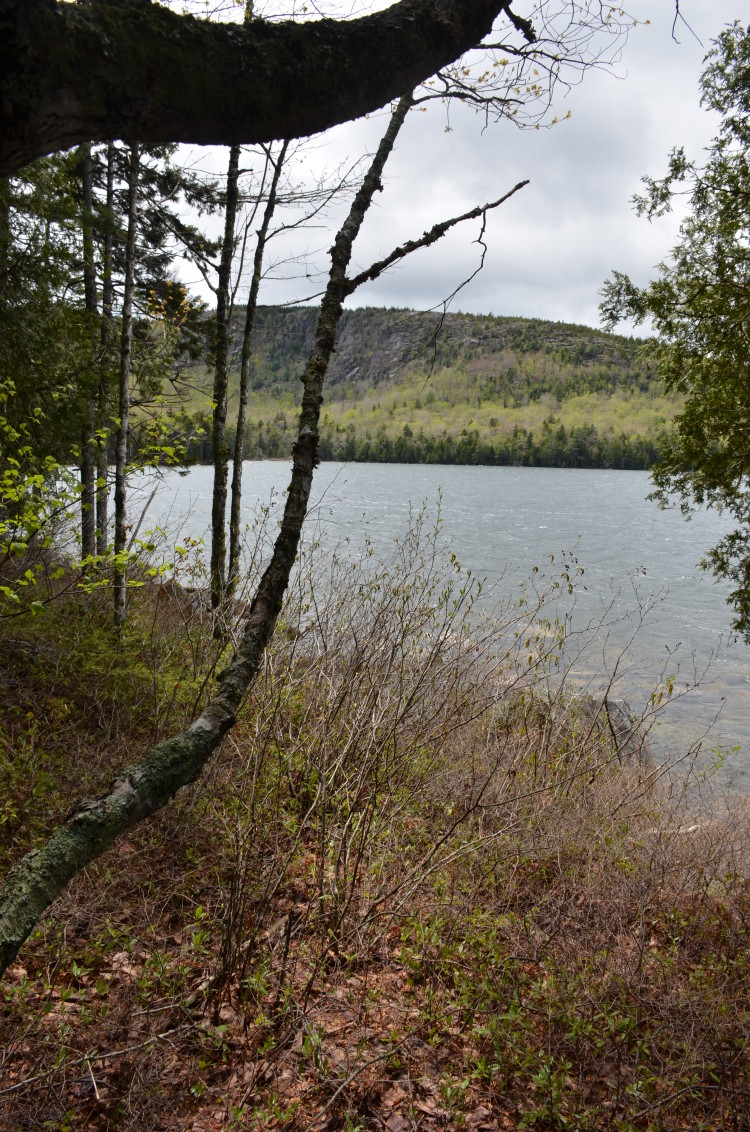 Acadia_BarHarbor-Maine (177/231)