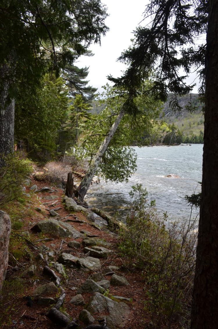 Acadia_BarHarbor-Maine (178/231)
