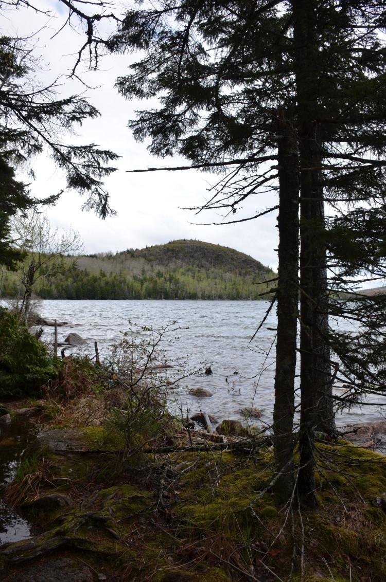 Acadia_BarHarbor-Maine (181/231)