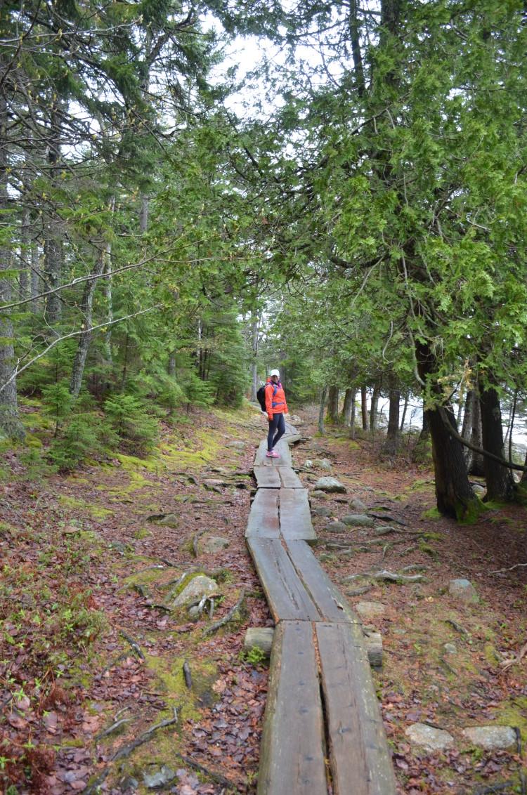 Acadia_BarHarbor-Maine (203/231)