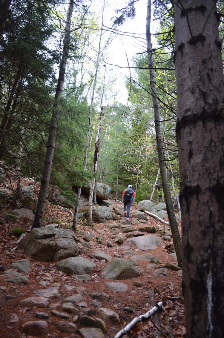 Acadia_BarHarbor-Maine (216/231)