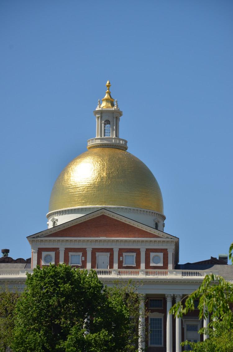 Boston_Hahvahd (50/302)