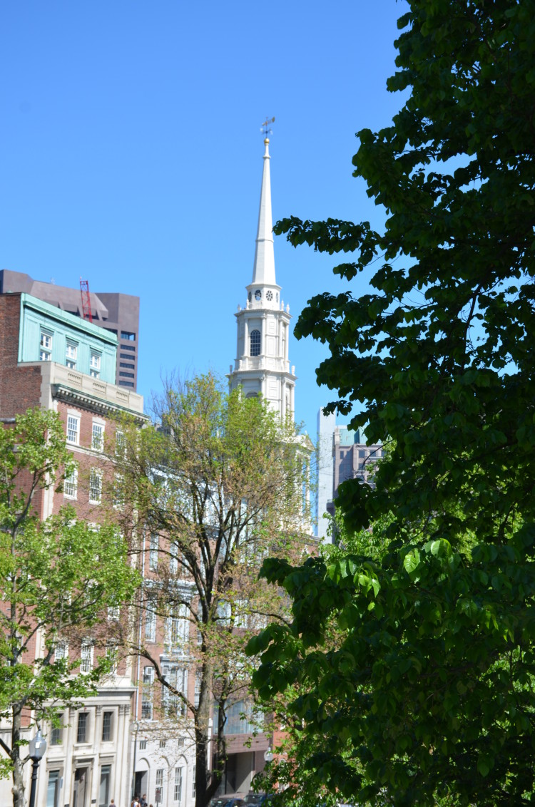 Boston_Hahvahd (71/302)