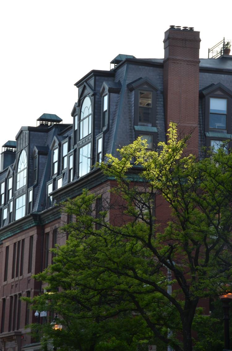 Boston_Hahvahd (186/302)