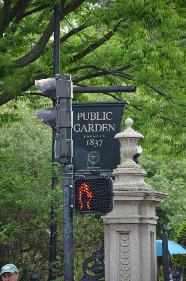 Boston_Hahvahd (229/302)