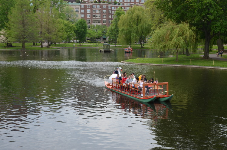 Boston_Hahvahd (242/302)