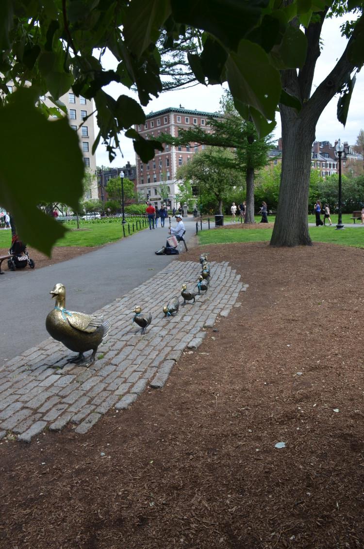 Boston_Hahvahd (261/302)