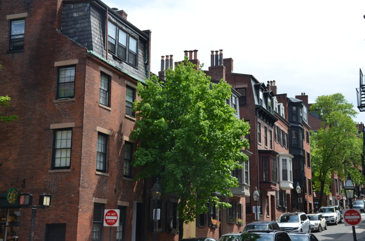 Boston_Hahvahd (273/302)