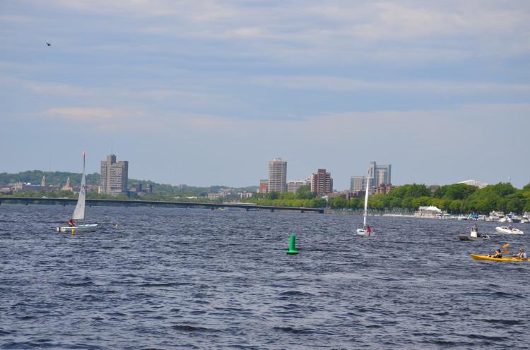 Boston_Hahvahd (283/302)