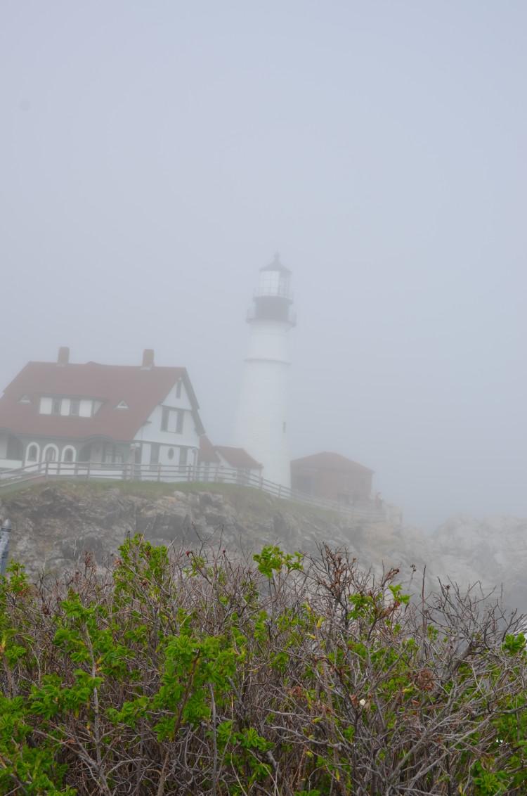 Portland Maine (113/364)