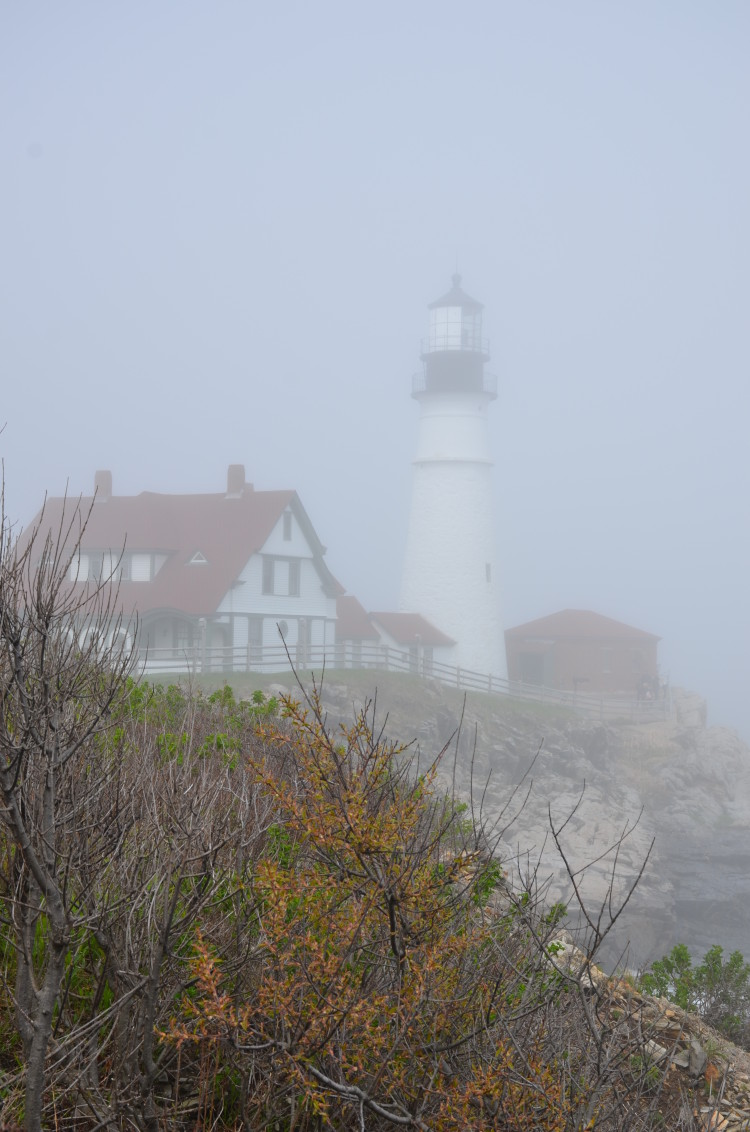 Portland Maine (121/364)