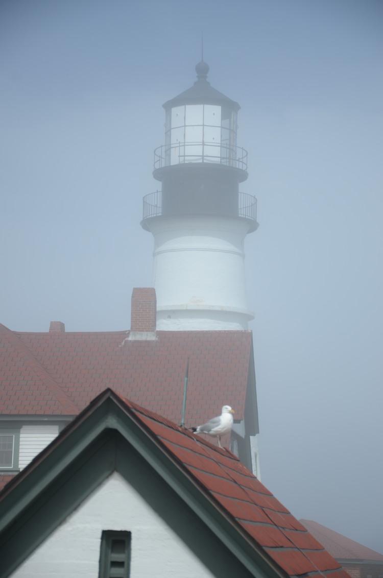 Portland Maine (182/364)