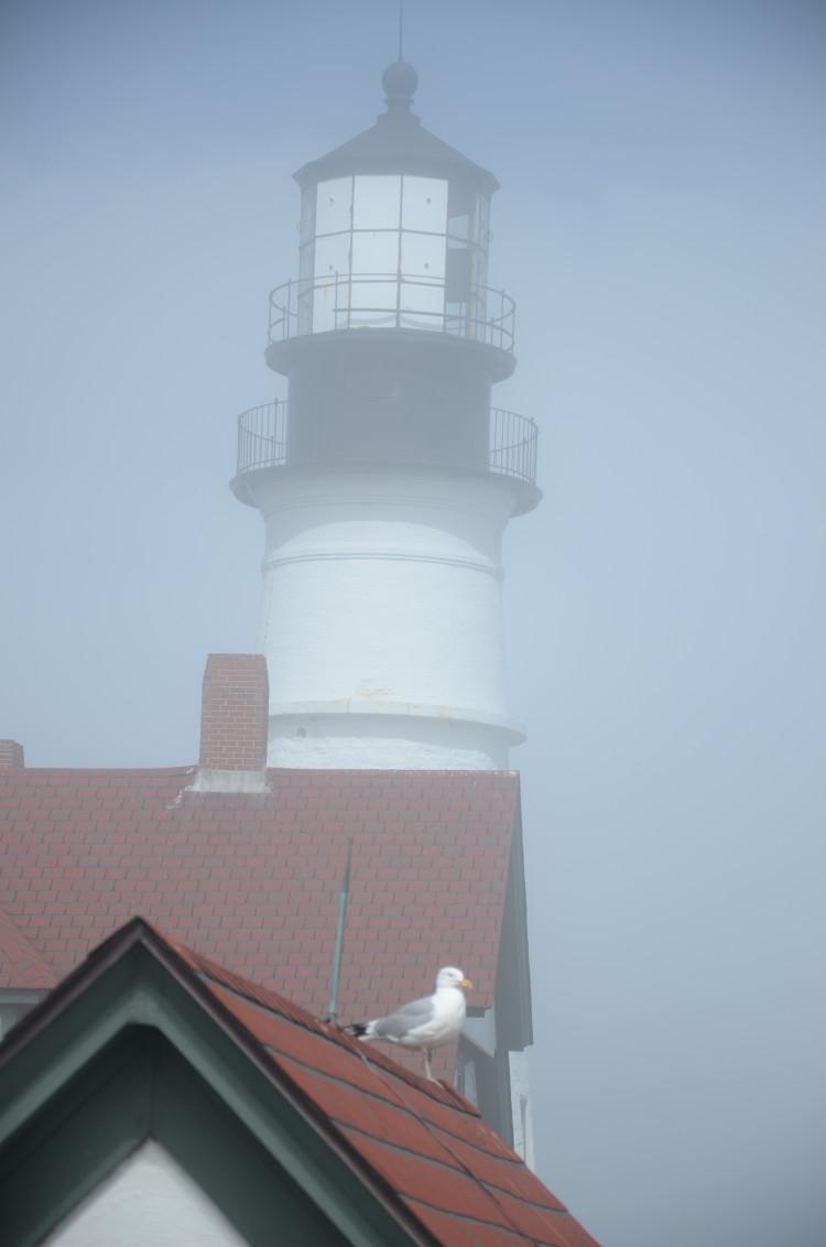 Portland Maine (183/364)