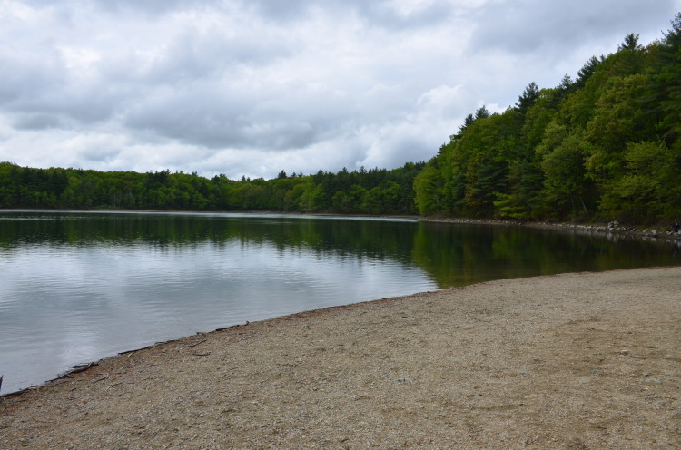 Walden Pond (25/28)