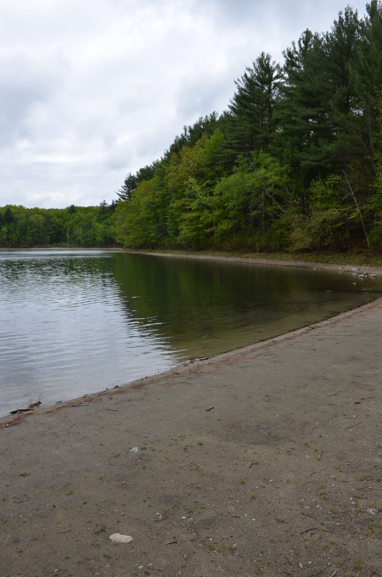 Walden Pond (28/28)