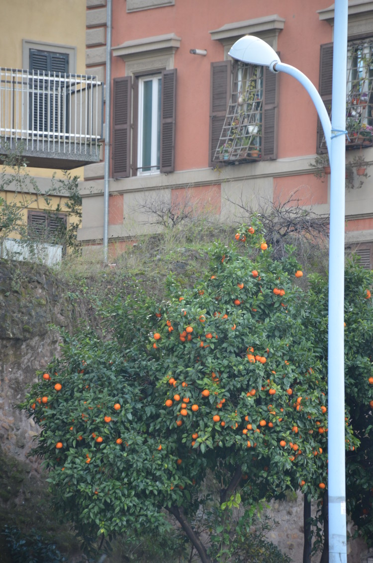 Rome Day 3 (22/293)