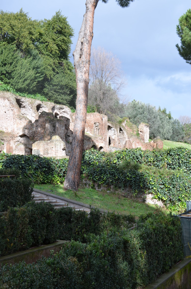 Rome Day 3 (49/293)