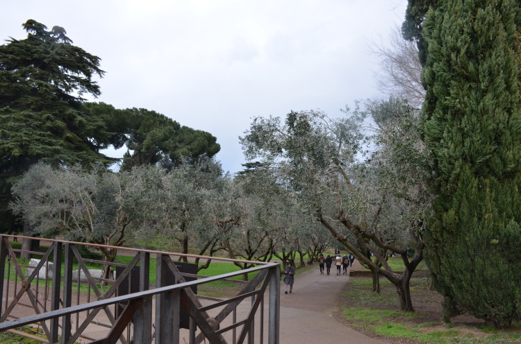 Rome Day 3 (68/293)