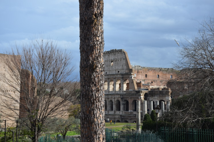 Rome Day 3 (128/293)