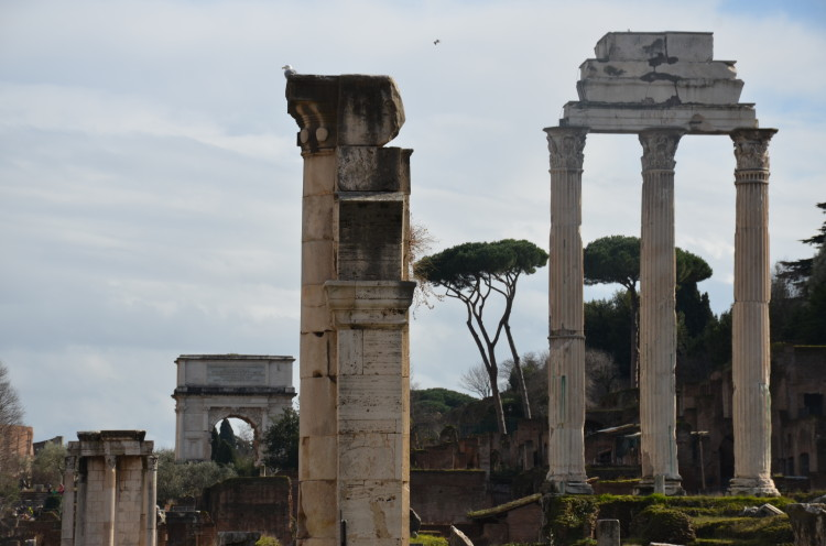 Rome Day 3 (206/293)