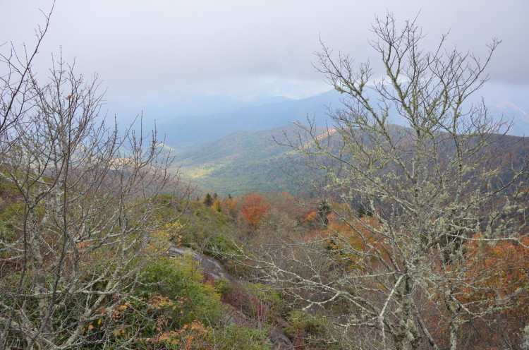 Great Smoky Mountains (6/67)