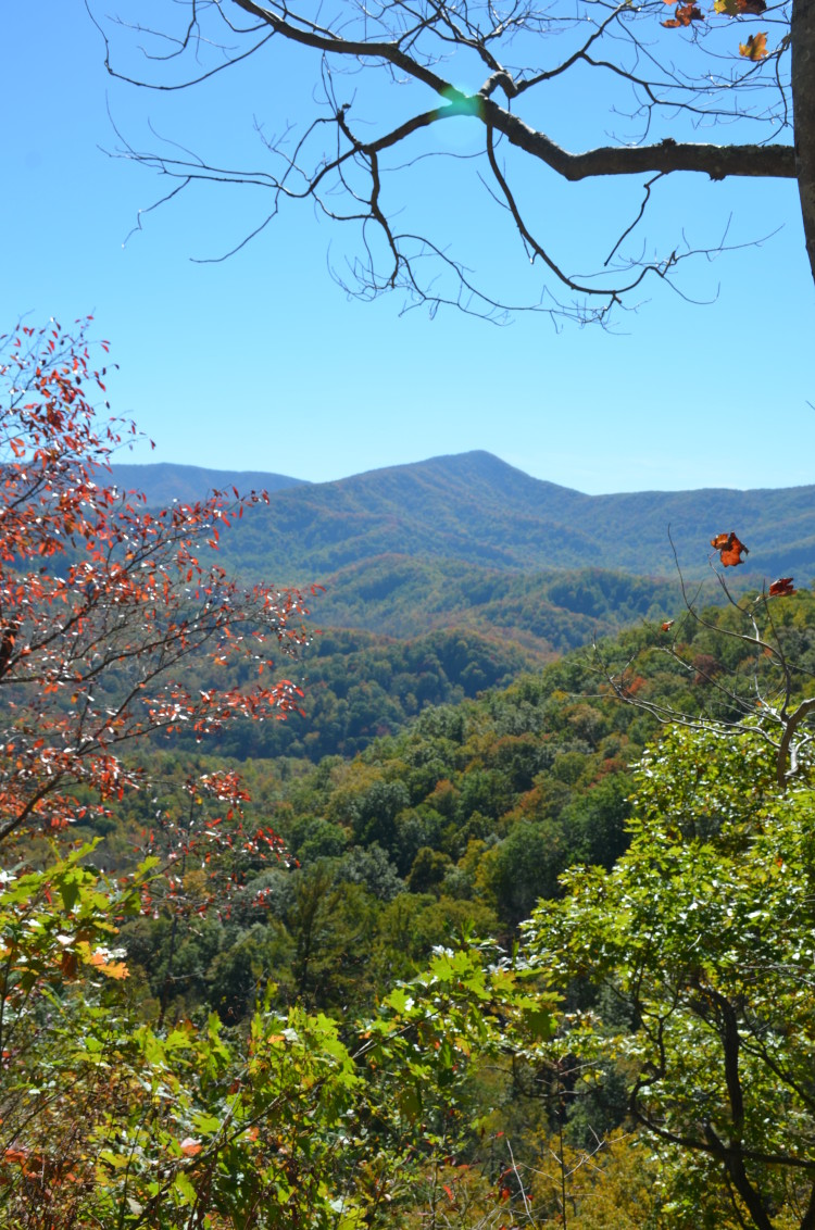 Great Smoky Mountains (64/67)