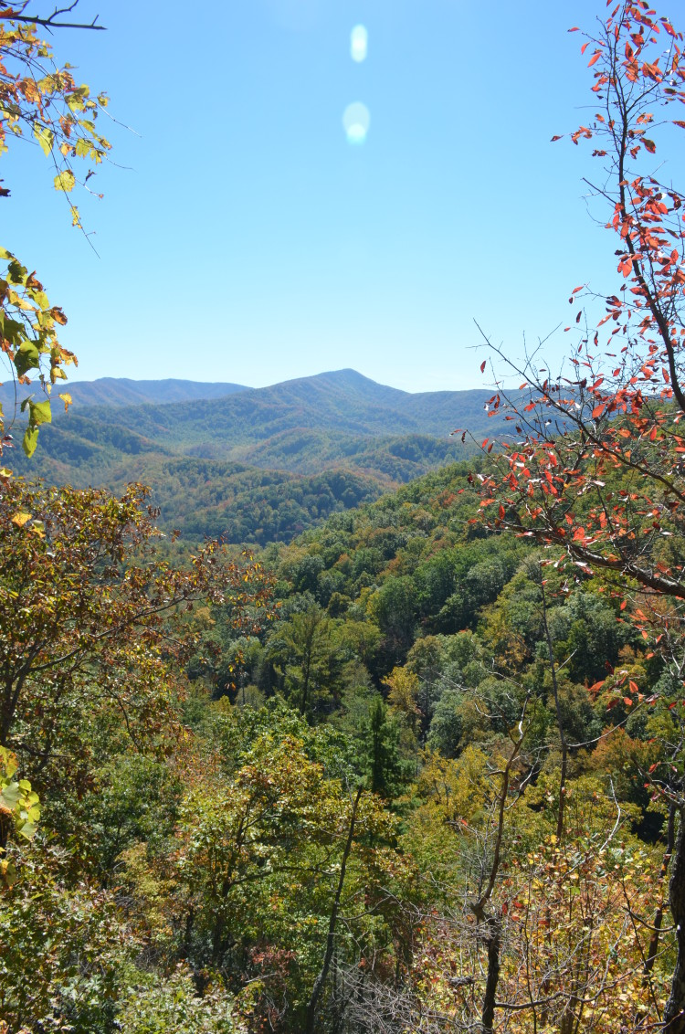 Great Smoky Mountains (66/67)