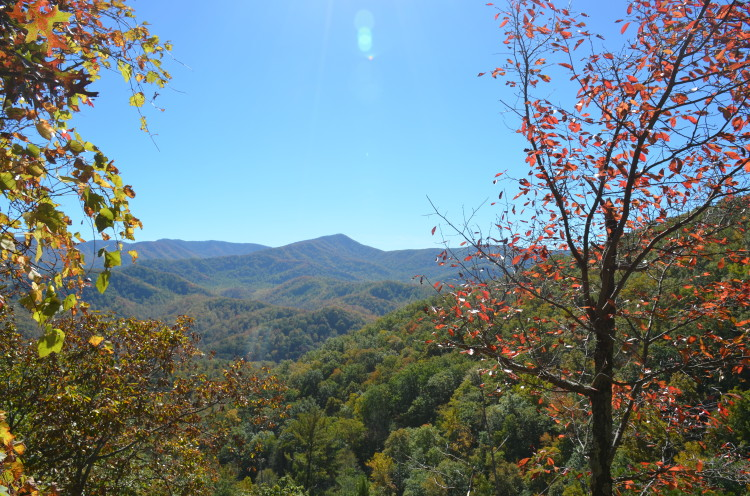 Great Smoky Mountains (67/67)